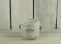 Whitewashed Stone Pot with Flowers and Garden Badge