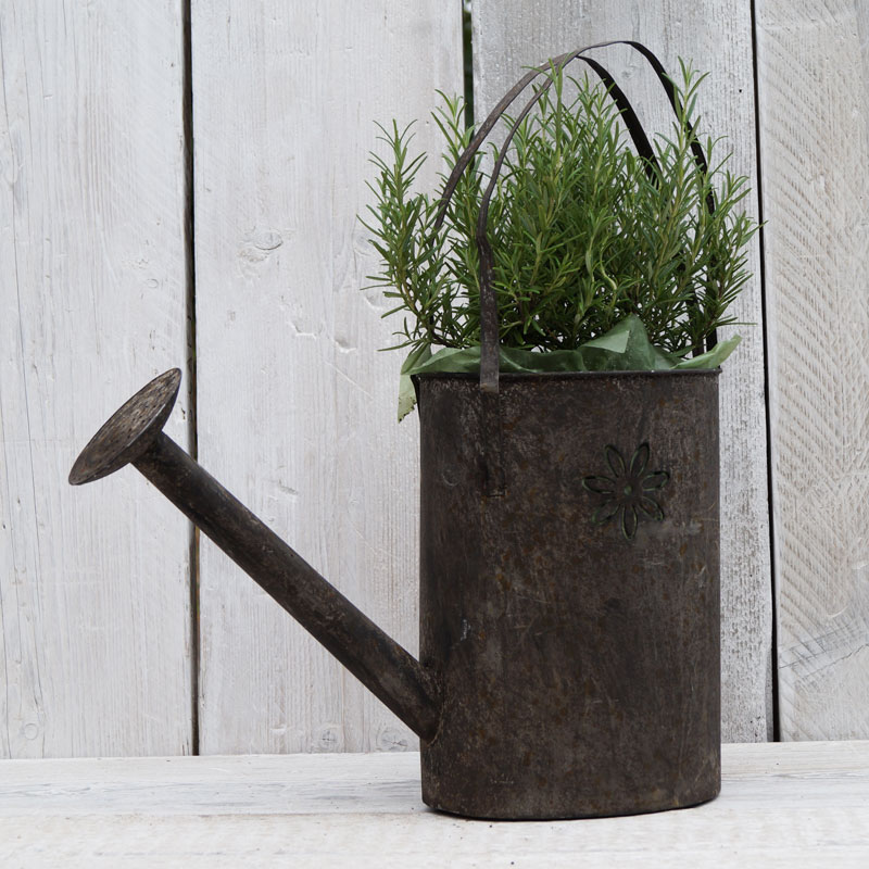 Watering Can Planter Satchville Gift Co Home Garden