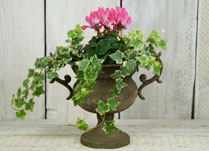 Vintage Effect Zinc Bowl Planter or Trophy