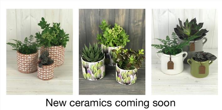 Ceramics Coming soon